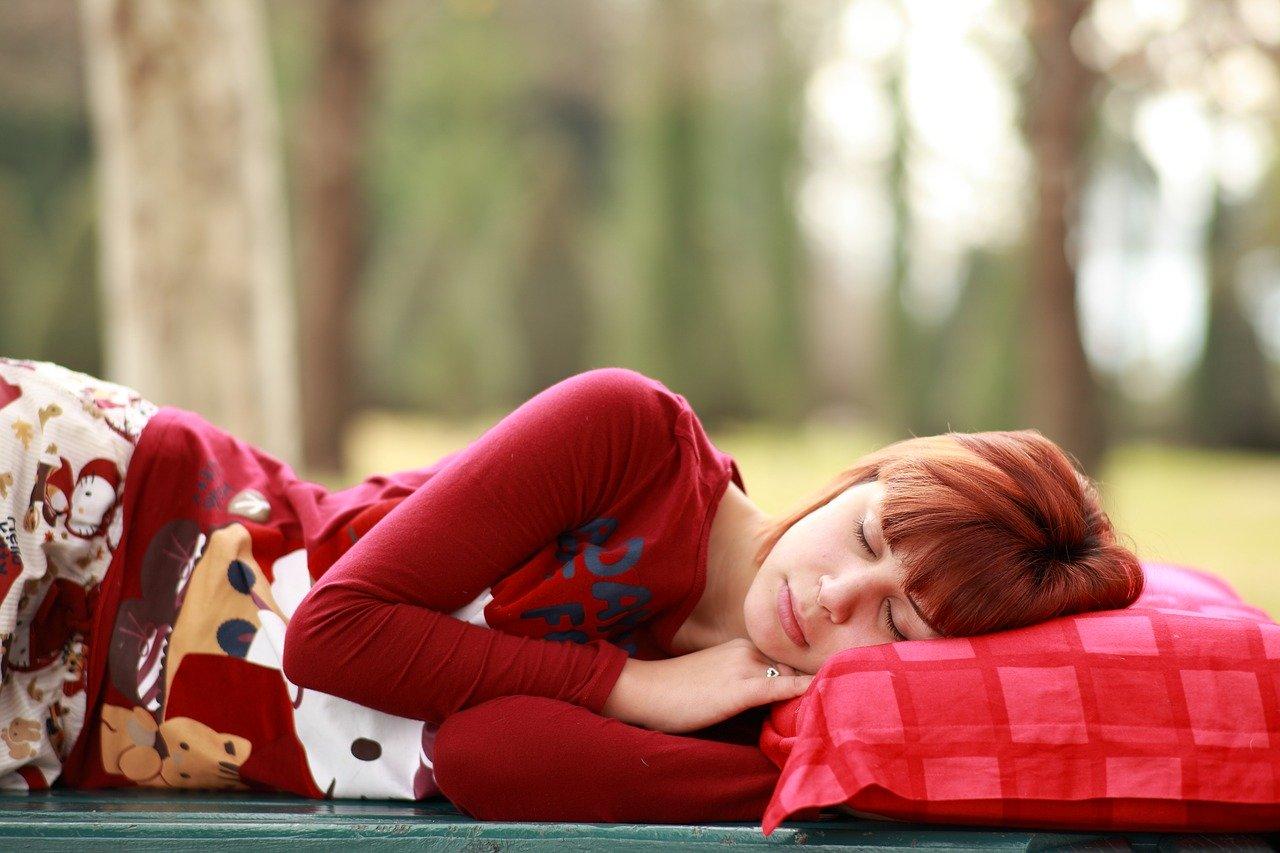 תפקידי השינה